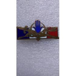 Forces Françaises en AFN