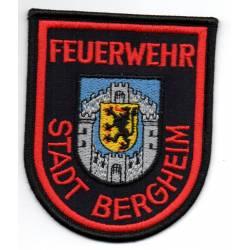 Allemagne : Sapeurs Pompiers volontaires de BERGHEIM