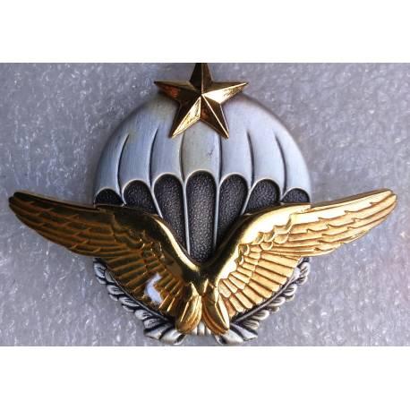 Brevet de Parachutiste Militaire de l'Armée de l'Air