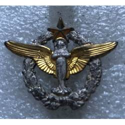 Pélérinage Militaire de Lourdes Armée de l'Air