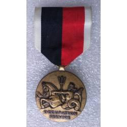 USA : Navy Occupation Service Medal