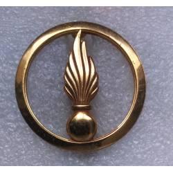 Cadre Spécial insigne de béret